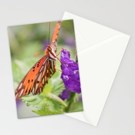 Butterfly in Ometepe, Nicaragua Stationery Cards