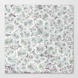 Rose rush Plum Canvas Print