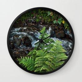 Ferns, Wahkeenah Falls, Columbia River Valley, Portland, Oregon Wall Clock