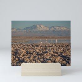 Atacama Desert III Mini Art Print