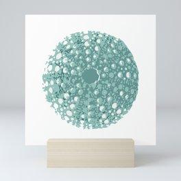 Sea Urchin Kina Mini Art Print
