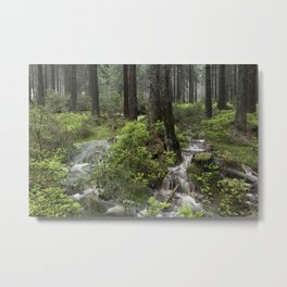 Mountains, forest, water. Metal Print
