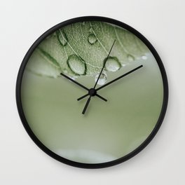 Raindrops On Leaf | Close-up Nature Photography | Leaf With Raindrops Wall Clock