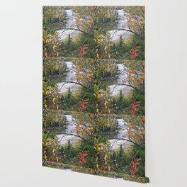 Winding River in Autumn Wallpaper