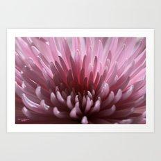 Lilac Spray Art Print