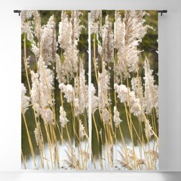 Canal side grass Blackout Curtain