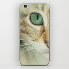 FELINE BEAUTY iPhone & iPod Skin