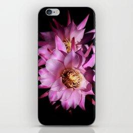 Queen of the Night iPhone Skin