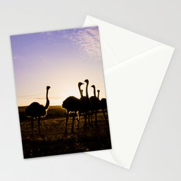 Ostriches at sunset Stationery Cards