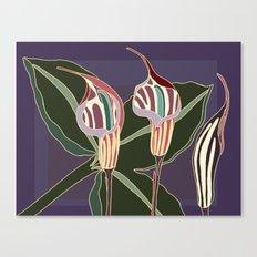Arum Lilies I. Canvas Print