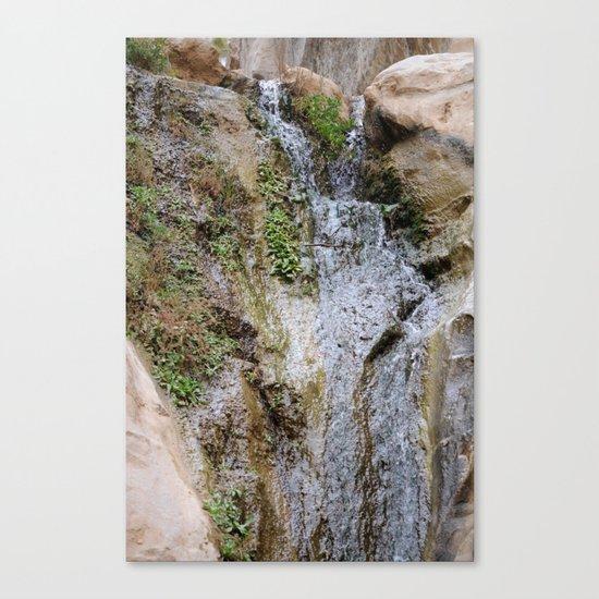 Cliffs of Israel Waterfall Series #6 Canvas Print
