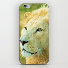 LION AROUND iPhone & iPod Skin