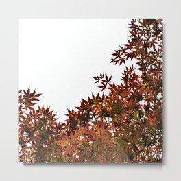 Changing of Seasons Metal Print