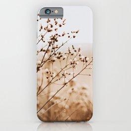 Golden Dried Grass Nature Art iPhone Case