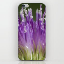 The Beauty within iPhone Skin