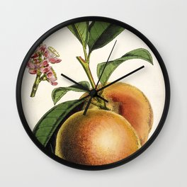 A peach plant - vintage illustration Wall Clock