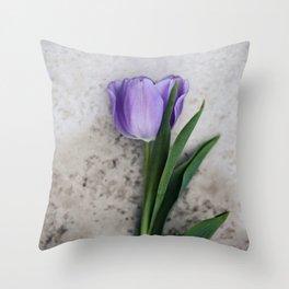 Blue Velvet 2/3 Collection Throw Pillow