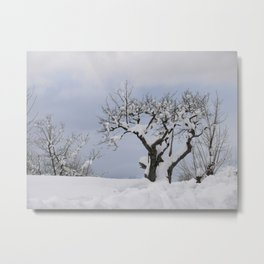 Snow in the mountains near Merano Metal Print