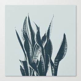 Long Leaves of The Green Plant #decor #society6 #buyart Canvas Print