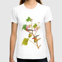 Bay Breasted Warbler John James Audubon Vintage Scientific Illustration American Birds T-shirt
