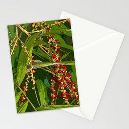 Manila Palm. Veitchia Merrillii. Tropical  Palms leaves and fruits. Common name in Venezuela Palma de Manila  Stationery Cards