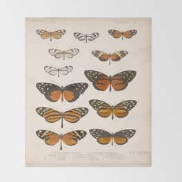 Vintage Scientific Anatomical Insect Butterfly Illustration Vintage Hand Drawn Art Throw Blanket