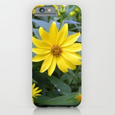 Woodland Sunflowers iPhone 6s Slim Case