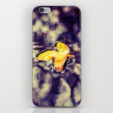 Rain pool iPhone & iPod Skin