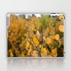 Golden Aspen II Laptop & iPad Skin