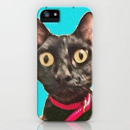 Kismet Kitty 2 iPhone Case