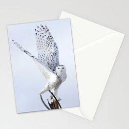Transcend Stationery Cards