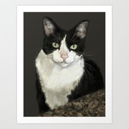 Cat Eightball Art Print
