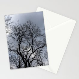 Forest wanderlust, cloudy day Stationery Cards