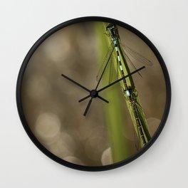 Two Damselflies Wall Clock