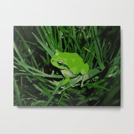 Little green frog Metal Print