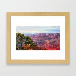 Grandview Grand Canyon by Amanda Martinson Framed Art Print