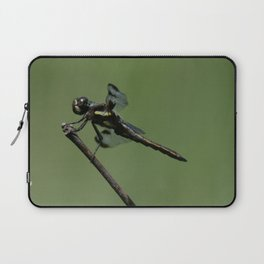 Twelve-spotted Skimmer Laptop Sleeve