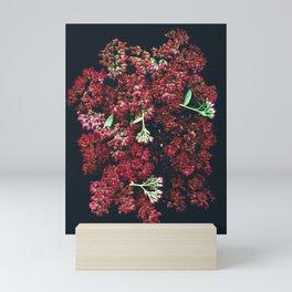 Burgundy Sedum Flowers Mini Art Print