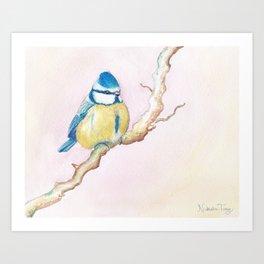 Resting Bird Art Print
