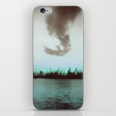 Seagull iPhone & iPod Skin