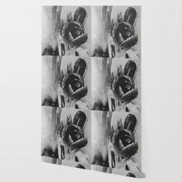 crocus bnw Wallpaper
