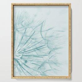 Dandelion In Blue Serving Tray