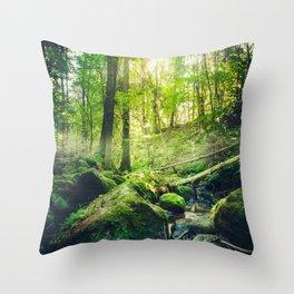 Down the dark ravine II Throw Pillow