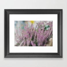 Lovely Pink. Framed Art Print