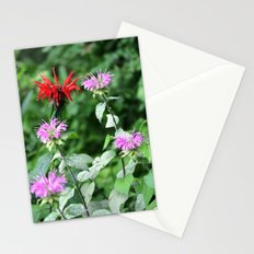 Bee Balm Stationery Cards