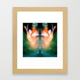 Lady Hawk Framed Art Print