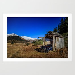 The shed and the bicycle Art Print