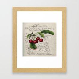 shabby elegance french country botanical illustration vintage red cherry Framed Art Print