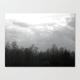trees and skies. Canvas Print
