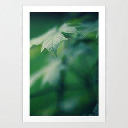 grassland - three Art Print